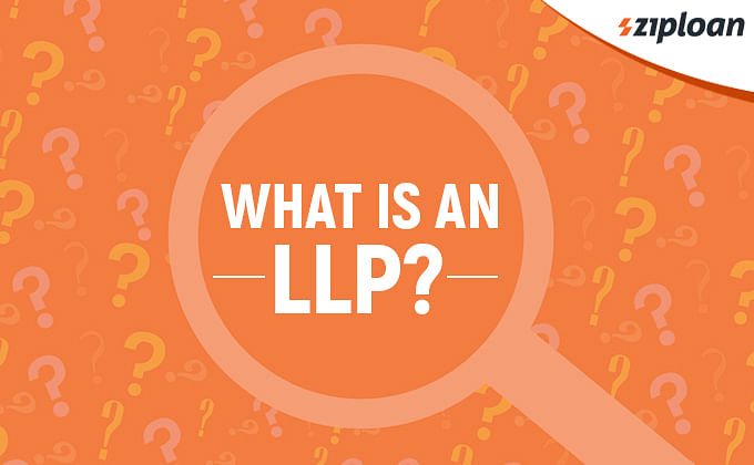 what is LLP