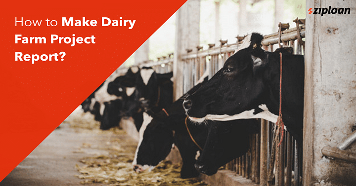 How-to-Make-Dairy-Farm-Project-Report-